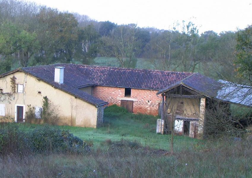 Plantation de peuplier et ferme à renover dans le Gers
