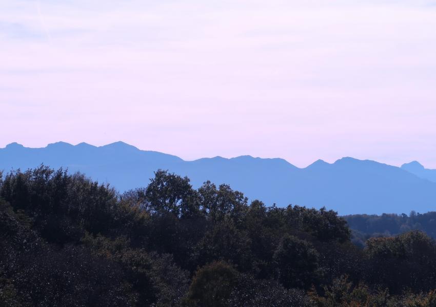 Propriété Forestière dans les Pyrénées Atlantiques