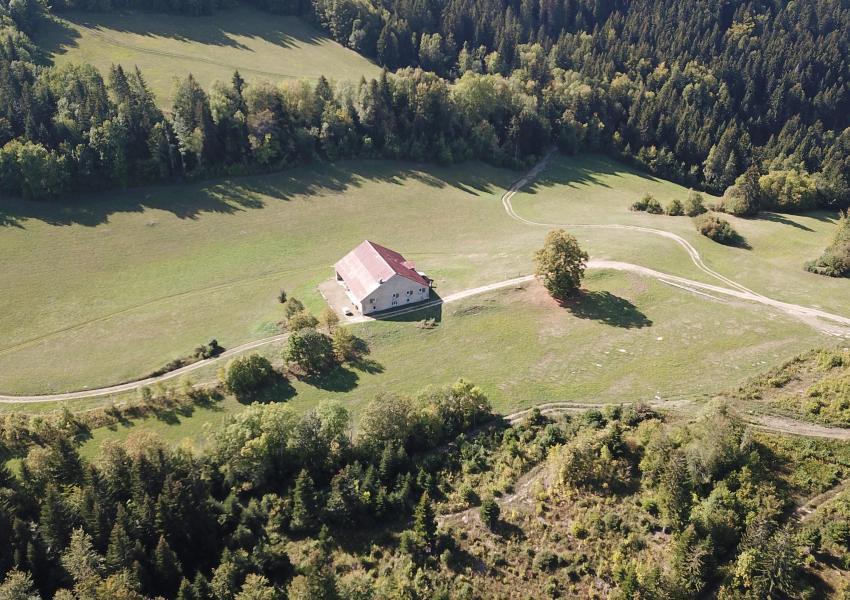 Domaine forestier à louer de 100 ha d'un seul tenant, dans le département de l'AIN (01)