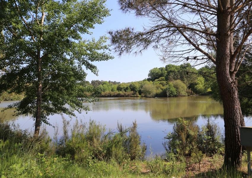Enclos de chasse en Dordogne