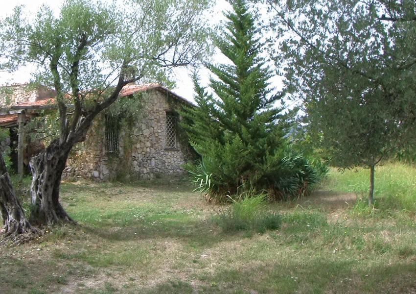 Domaine Forestier dans le Var