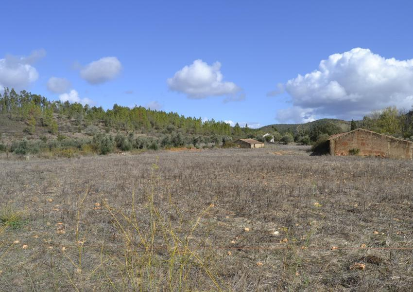 Agroforestry property of 90 ha, with house and several ruins, near Odemira - Alentejo coast