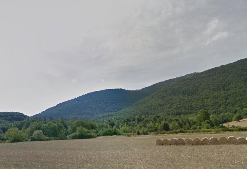 Forêt à vendre dans les Pyrénées-Orientales