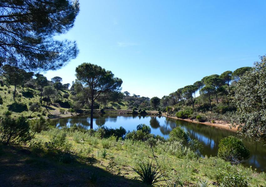 Hacienda à vendre en Andalousie