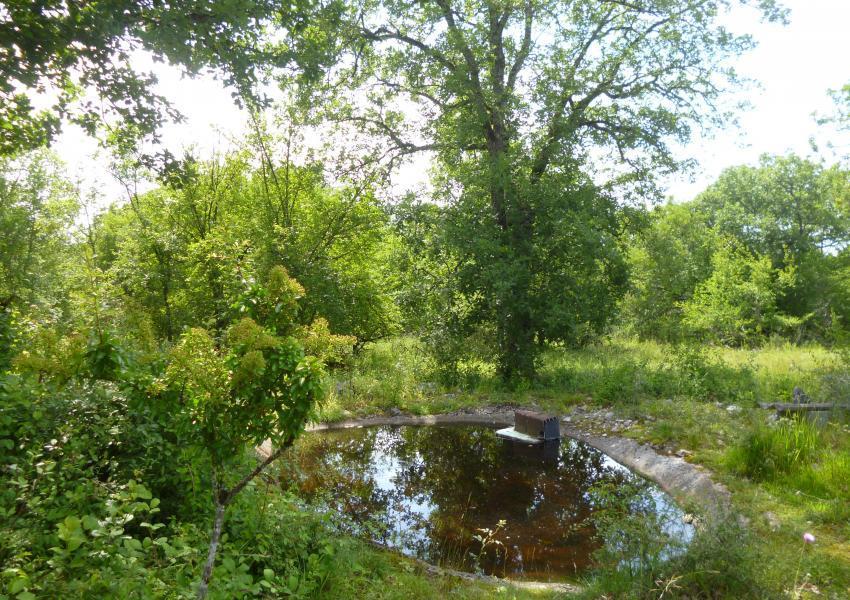 Parque de caça em Lot