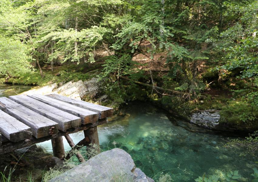 Domaine forestier et atelier d'architecte en Occitanie
