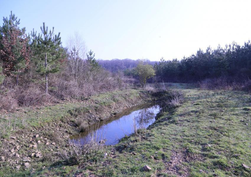 Parc de Chasse proche de Poitiers