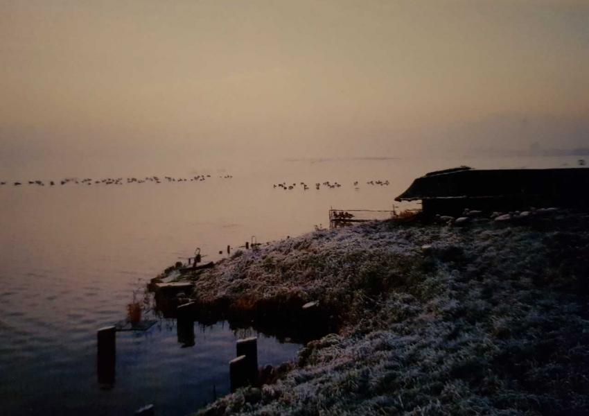 Nuits de Hutte de Chasse dans les Hauts de France