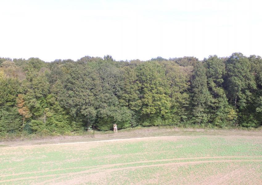 Propriété rurale dans le Loir-et-Cher