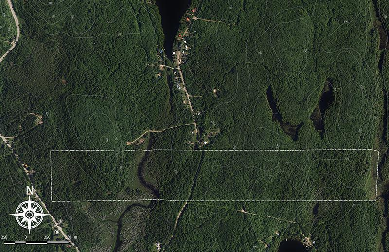 Forest estate 'Chemin du Lac' in eastern Canada, in the western province of Quebec