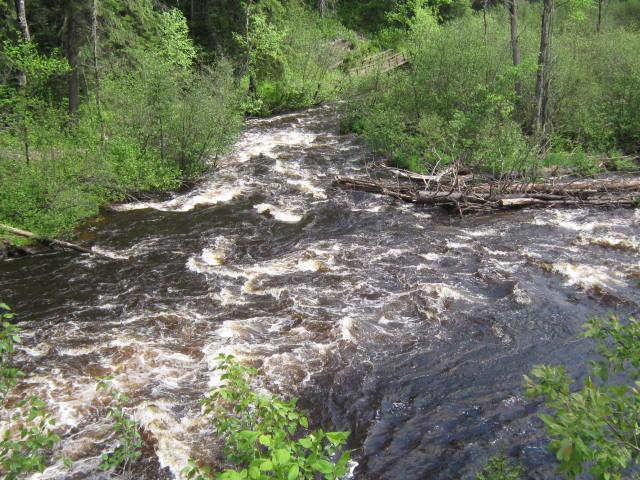 """Propriété forestière, """"Forêt de la Rivière"""" constructible à l'Ouest de la province du Québec"""