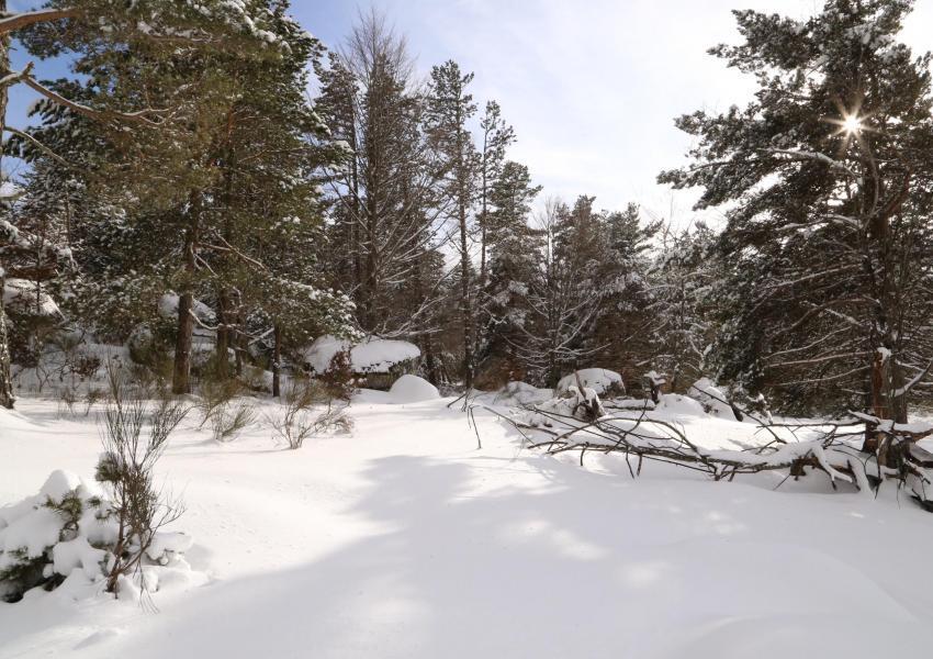 Propriété Forestière en Ariège