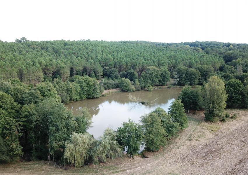 Propriété de Prestige en Dordogne