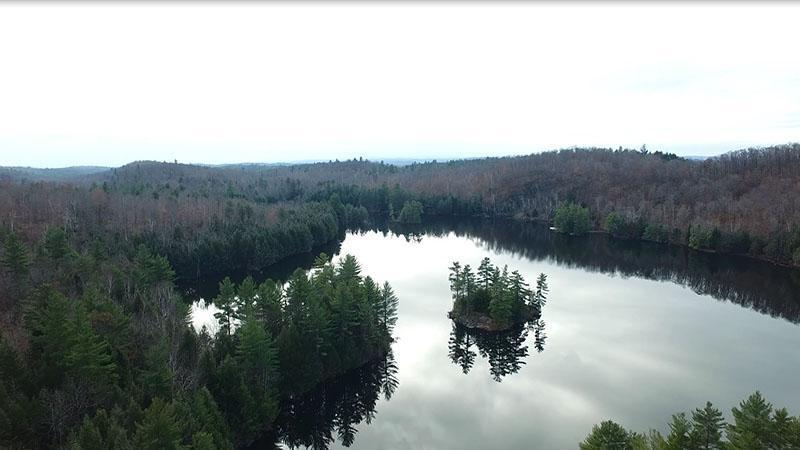 Vast wooded hunting and fishing estate on a single site in the Outaouais area, two hours from the cities of New York and Boston