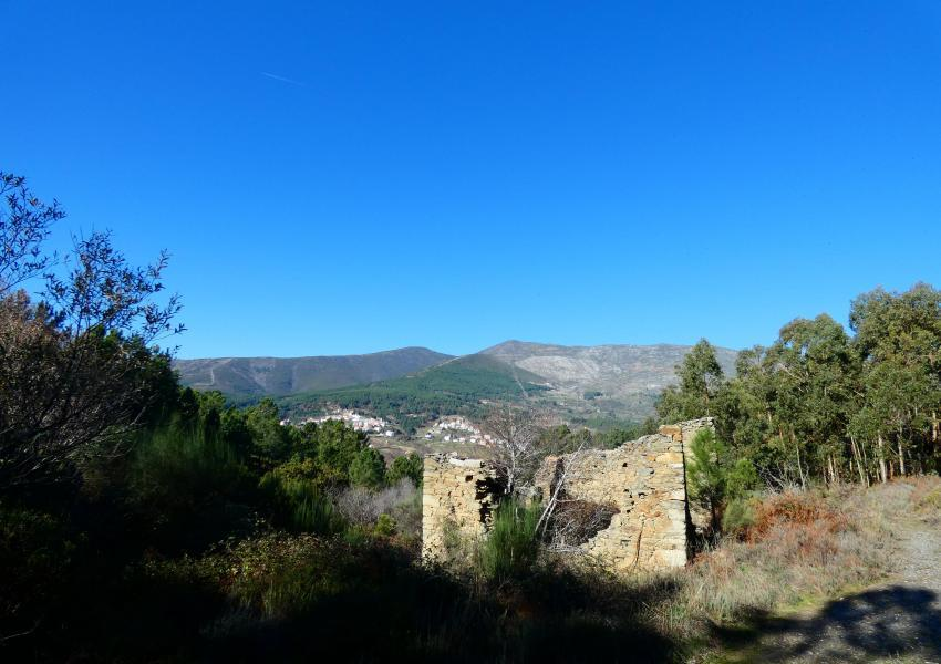 Propriété forestière dans le parc naturel de Serra da Estrela