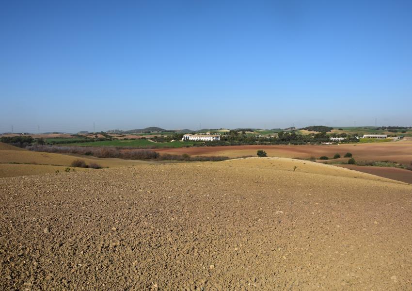 Domaine de Chasse et Agricole en Andalousie (Espagne)