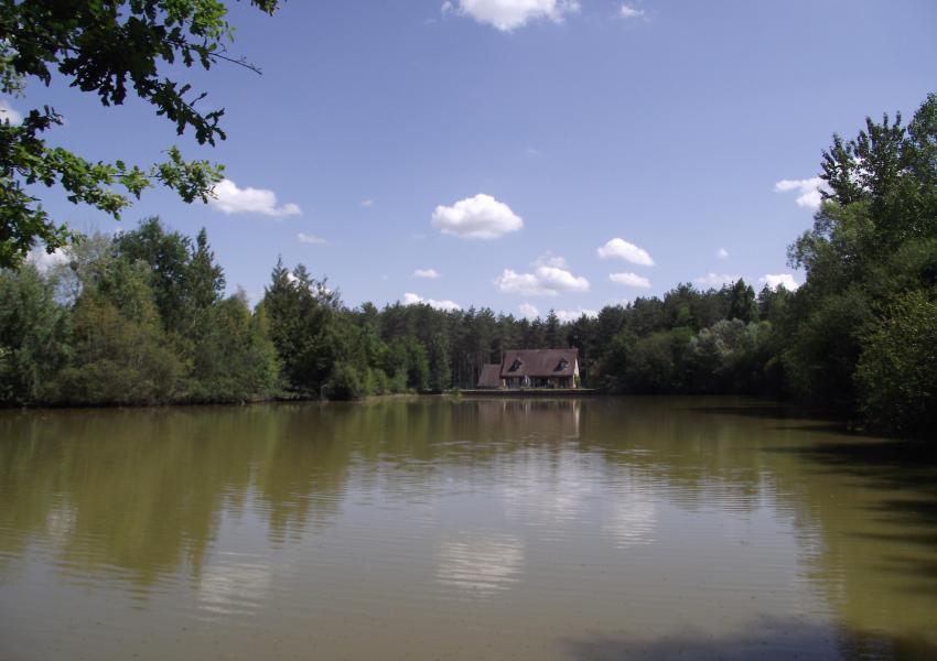 Propriété bâtie cynégétique, halieutique et forestière en Sologne