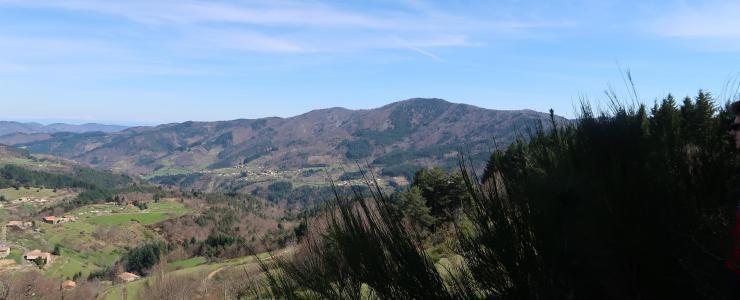 Forêt Investissement en visite en forêt du Cheylard