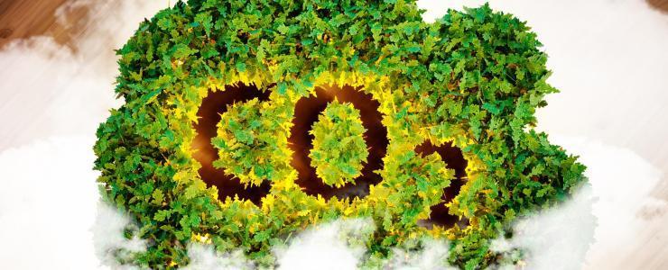 Evaluer et optimiser le bilan GES des activités forestières
