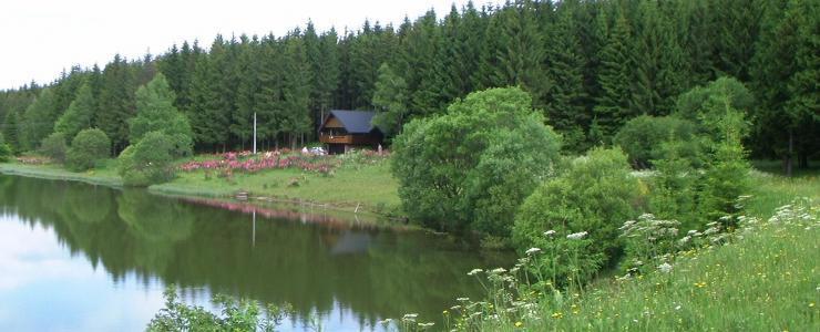 Chalets et étang au milieu de la Forêt