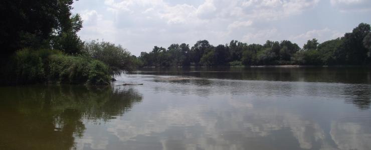Propriété agro-sylvo-cynégétique en bord de Loire