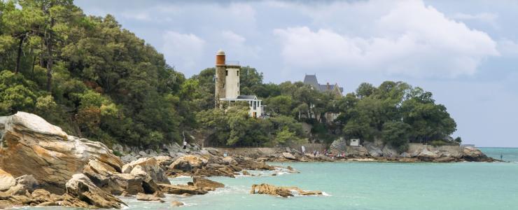 85 Vendée - Une valeur patrimoniale forte due à la rareté des ventes de forêts