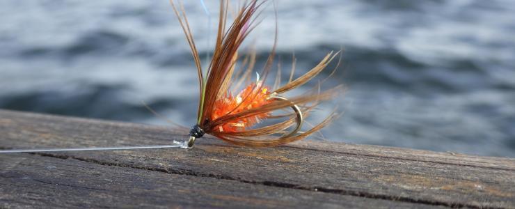 Le saviez vous? Spécial pêche
