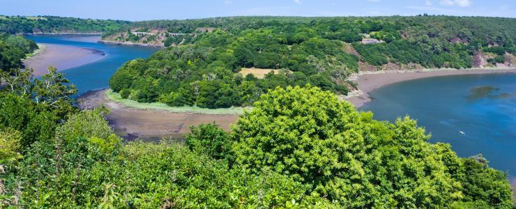 22 Côtes d'Armor - Des forêts accessibles et giboyeuses