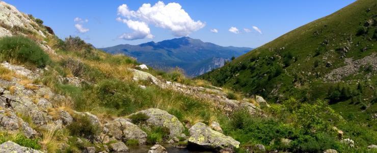 09 Ariège - Des forêts conservatrices de la biodiversité