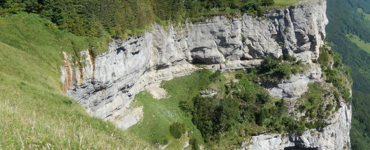 26 Drôme - Des essences forestières variées et une forêt hétérogène