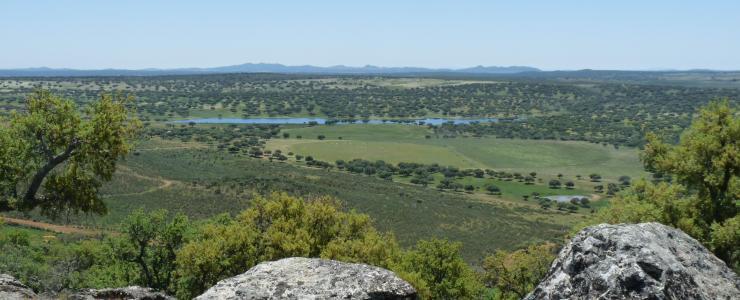 Propriété dans la Région de l'Estremadure, au Centre Ouest de l'Espagne près de la frontière portugaise