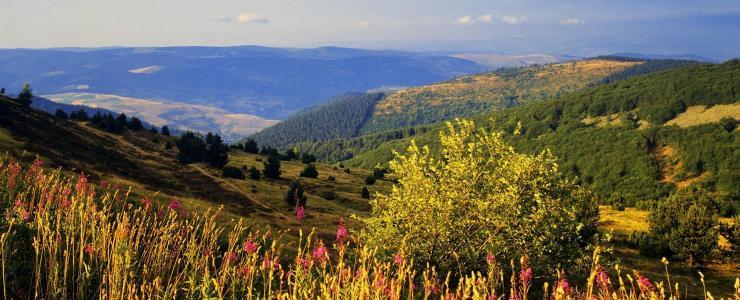 Parcs Naturels Nationaux et Forêts