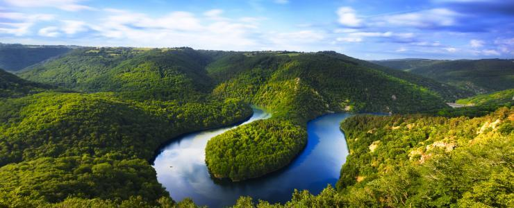Les forêts du Massif Central