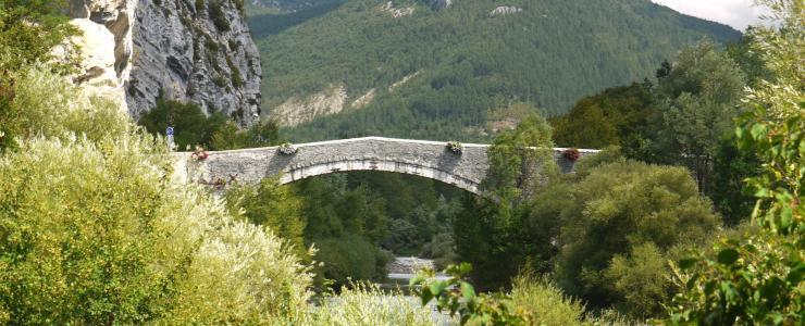 04 Alpes de Haute Provence - Un investissement forestier intéressant