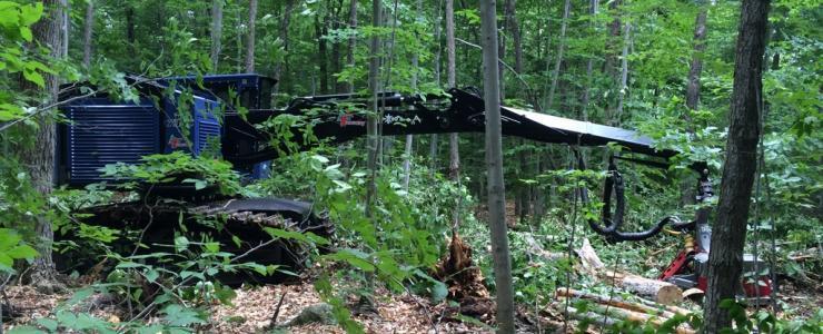 Sylva Croissance : le génie forestier appliqué à l'urbain et à la forêt privée