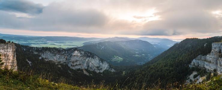 39 Jura - Terre forestière d'excellence