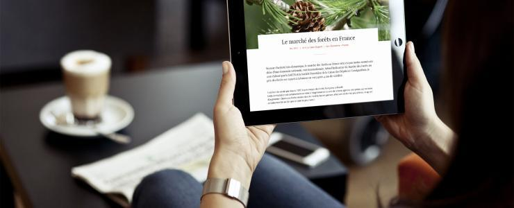 The forest time, le magazine connecté à la forêt