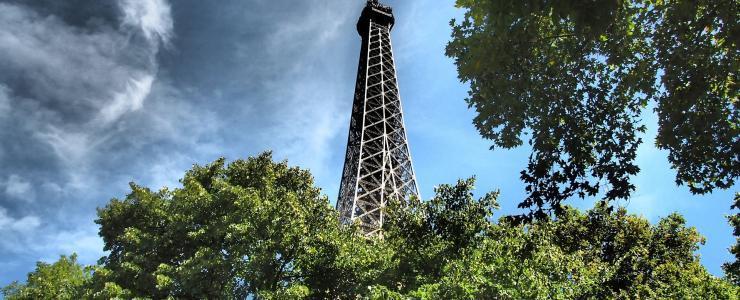 Le Bassin parisien : une riche région forestière