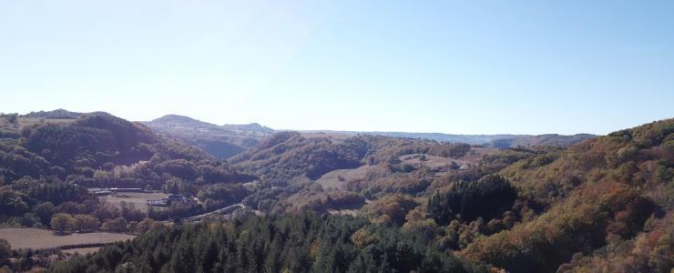 Forêt de Production dans le Cantal, au coeur du Massif Central