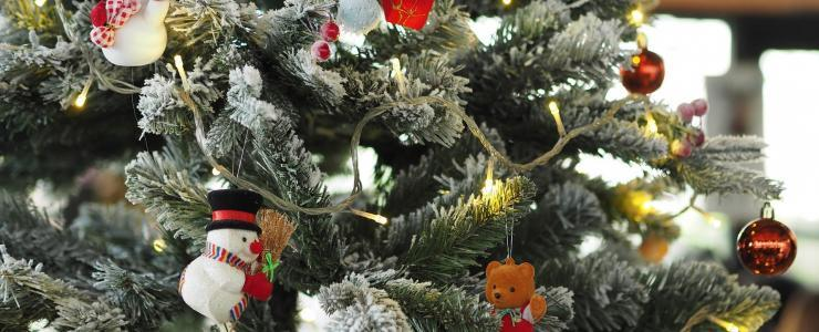 Le saviez-vous ? Spécial sapin de Noël
