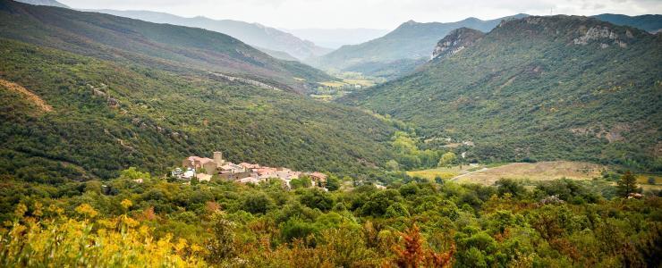 11 Aude - Faune et forêts en harmonie