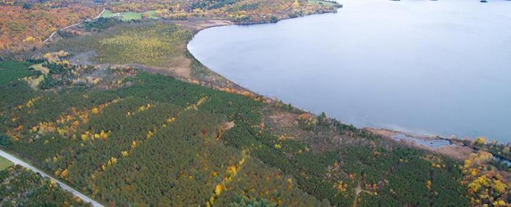 Forest hunting estate, with possibility to build, in the Outaouais area of the Province of Quebec, one and half hours from Boston and New York.