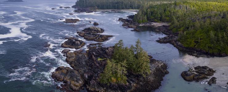 La Forêt Cotière, Trésor National du Canada