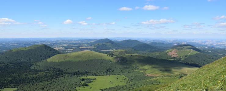 63 Puy de Dôme - Un bois de qualité favorisé par le climat