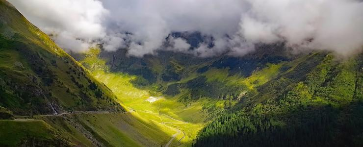 La forêt Roumaine en quelques chiffres