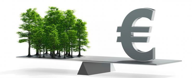 Fiscalité et Réglementation Forestière en France