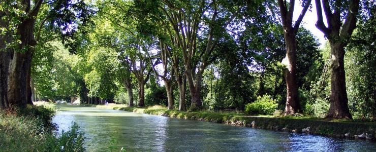 25 Doubs - Une exploitation du bois omniprésente