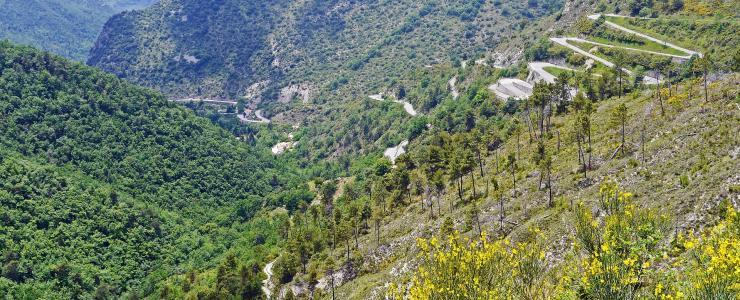 06 Alpes Maritimes - Des forêts de loisirs