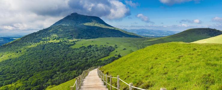 Auvergne-Rhône-Alpes - A vast forest region