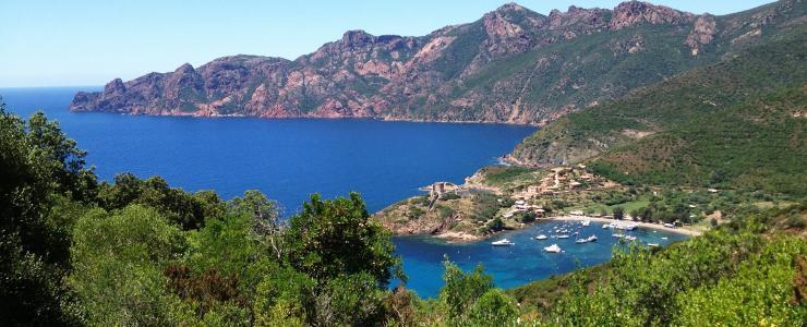 Corse - Des forêts remarquables